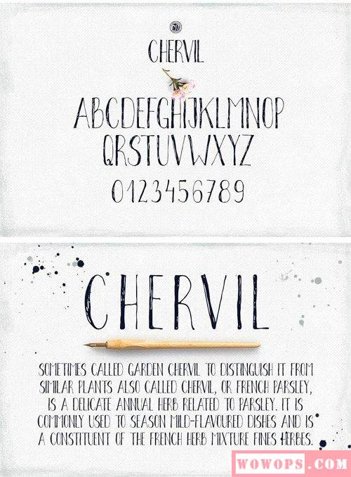 chervil手写唯美婚礼卡片字体素材