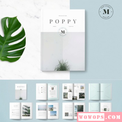 书籍封面ppt模板_高级专业刊物封面杂志画册宣传册内页版式indesign模板排版设计 ...